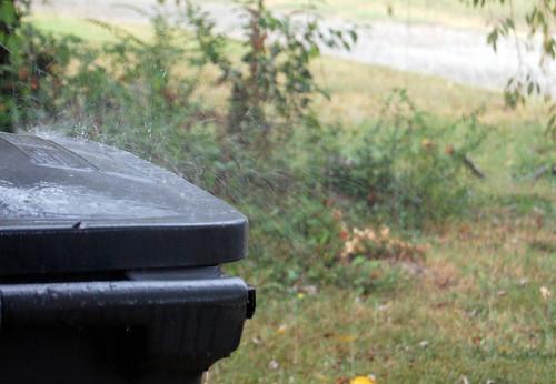 rain trash can