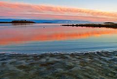 autumn colors on the shore (Henri Bonell) Tags: autumn sunset sea colors finland shore sunsetcolours bothnianbay permeri bottenviken