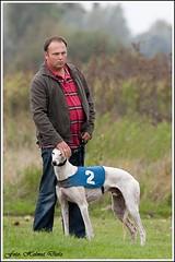 Greyhound Roswell Diamond & Steve