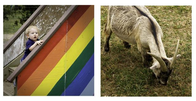 rainbowslide2comp