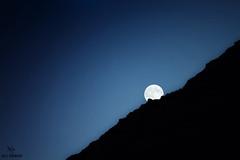 Moon light By  _  Ali Hamad (Ali Hamad |  ) Tags