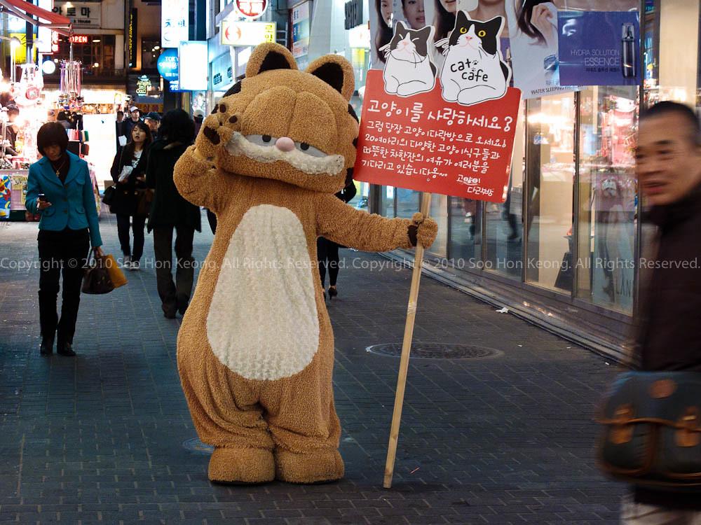Garfield Say Hi @ Seoul, Korea