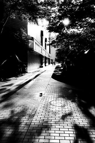 niigata monochrome 28