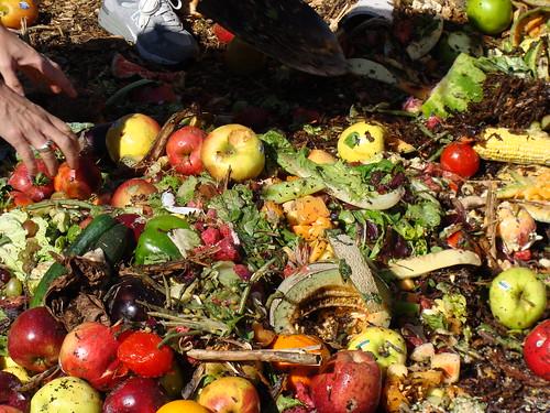 More Compost!