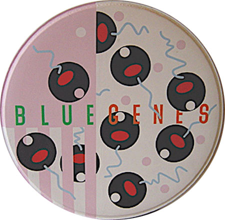 birch-bluegenes