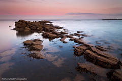On the ridge (Azzmataz) Tags: sunset bay low cullercoats whitley tideanthonyhallphotography