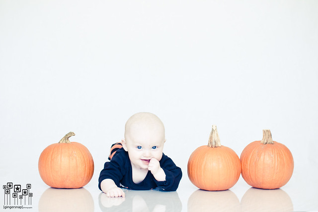 reese pumpkins3