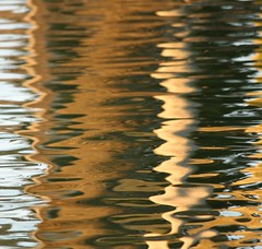 IMG_3471 (carlos_ar2000) Tags: lake distortion abstract color colour reflection water argentina lago agua buenosaires wave reflected reflejo palermo abstracto distorsion onda digitalcameraclub