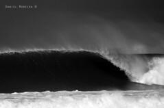 50 - Peniche (Daniel Moreira) Tags: portugal surf rip pro curl 2010 peniche