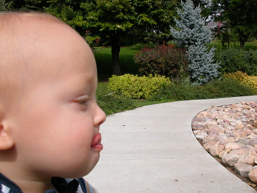 Oct 7 2010 Elden