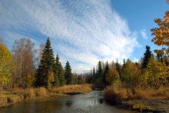 Alaska Anchorage Perfect Sky (MarculescuEugenIancuD5200Alaska) Tags: alaska day cloudy anchorage newvision paololivornosfriends outstandingromanianphotographers peregrino27newvision