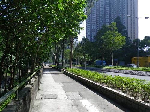 12/10/10 Lunchtime Run @HKUST