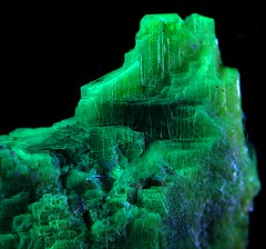 "Autunite ""Mountain"" Fluorescing... (Sea Moon) Tags: green uv blacklight uranium mineral radioactive fluorescence specimen"