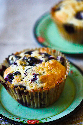Blueberry cornmeal muffins  (1 of 1)