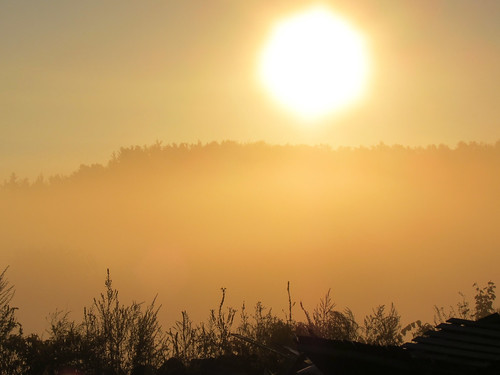Sun Through Fog - Lunenburg MA