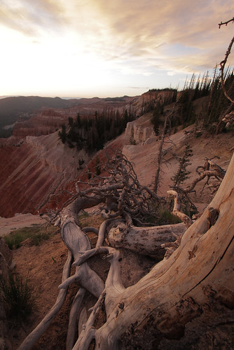 Cedar Breaks NM-1.jpg