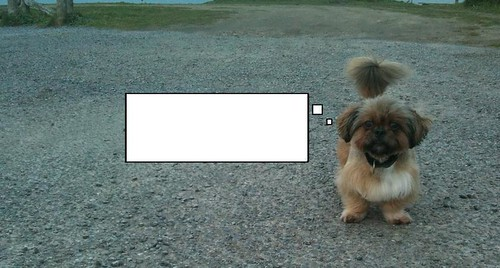 Perro fotoviñeta Mazda 3