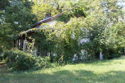 Grandma's House - Overgrown Exterior on 9_19_2010
