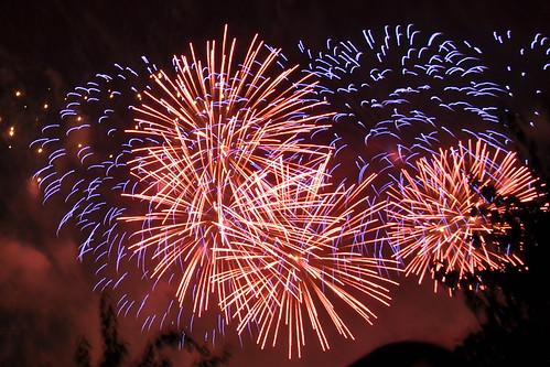 Disneyland day 5 - Fireworks 16