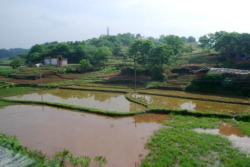 k4 - Ānhuī Farm