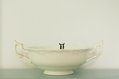 #18 (_cassia_) Tags: blue horse white black face toy grey peekaboo cream bowl plastic playful lookingover 365dayproject followthehorse