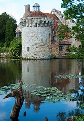 Scotney Castle ... ( Angel of light ) Tags: uk summer england castle english history water reflections mirror countryside kent ruins waterlily nt seasonal historic driftwood lilypads moat scotney scotneycastle angeloflight2009 summertimeuk welcomeuk
