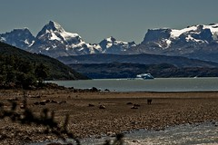Lago Argentino near Onelli Glacier @ Patagonia. (Richard Verroen) Tags: patagonia lake snow mountains meer sneeuw glacier bergen patagonie onelli patagoni