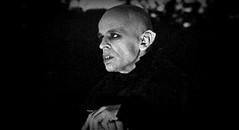 klaus-kinski-herzog-nosferatu-the-vampyre1