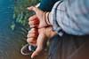 hand turtle