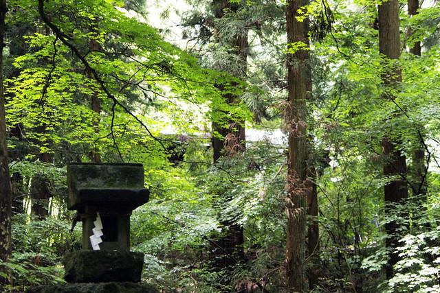 100627_104147_塩野神社