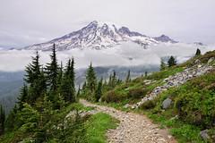 Mt Rainier from the Tatoosh Range (David M Hogan) Tags: mountain washington nikon cloudy trail mtrainier mtrainiernationalpark plummerpeak d5000
