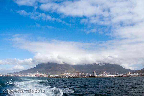 RYALE_Cape_Town-234