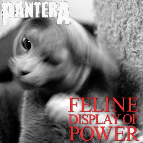 Pantera & Hysse & Flippi