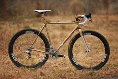 Gold on Gold (Vanilla Workshop) Tags: vanilla chrisking speedvagen envecomposites