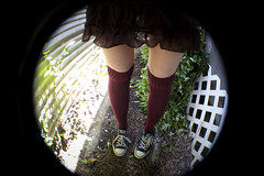 (rachel a. k.) Tags: socks self noface chucks year3 myyard 365days sillywide 091010 canonrebelt2i