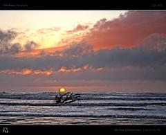 The Fruit of Nature's Fury (tomraven) Tags: ocean sunset sea sky seascape storm nature fruit clouds waves driftwood deadwood hdr fury sunsetsky tomraven aravenimage q32010