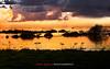 Atardecer en la Laguna de Fuente de Piedra (José Báez) Tags: laguna mywinners lagunadefuentedepiedra josébáez fotosdeestepa lagunadefuentedepiedraflamencos