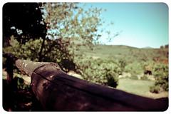 Acebo... (InVa10) Tags: rural canon eos casa spain arboles natural piscina badajoz campo acebo extremadura caceres inva 450d