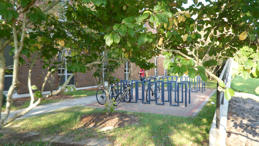 Bicycle Racks (Hollis Building)
