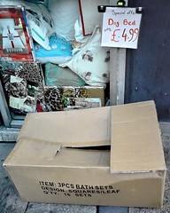 dog bed 4.99 (Harry Halibut) Tags: dog window sign shop bed box pavement sheffield images cardboard allrightsreserved sheffiel urbanarea waingate colourbysoftwarelaziness imagesofsheffield 2010andrewpettigrew dhaymarket sheff100911080