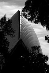 The Sydney Opera House, a different view (Andy Burton Oz) Tags: blackandwhite bw building theatre sydney australia icon entertainment tiles nsw operahouse sydneyharbour tiling 2010 sydneyoperahouse concerthall builtenvironment portjackson macquariest joernutzon afsvrmicronikkor105mmf28gifed nikond40 stockcategories andyburton aperture303