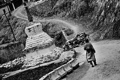 Road Of Faith (Devansh Jhaveri) Tags: travel bw india buddhist bandw leh ladakh