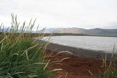 Gásir Entreposto Comercial Medieval Islândia