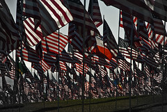 Flags (Freund Studio) Tags: memorial 911 flags malibu pepperdine danfreundarchitect photobydanfreund2010allrightsreserved wwwfreundstudiocom freundstudio