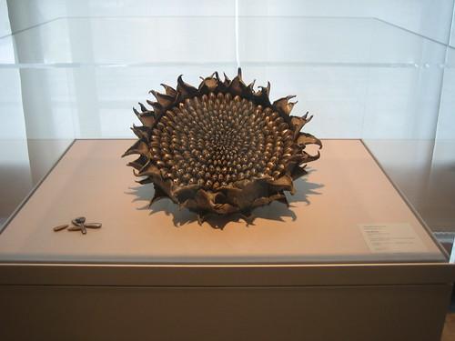 Sunflower, 2005, Sugiura Yasuyoshi _7752