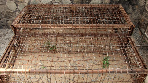 War Remnants Museum - Con Dao Prison - Two Tiger Cages