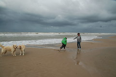 Strand (=Mirjam=) Tags: sea summer sky dog beach dogs water clouds strand d50 sand wolken zee hond nikond50 lucht 2010 zand bergenaanzee honden nikond300s