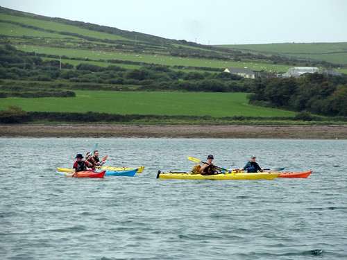 Kayakers in Dingle Bay