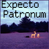 Expecto (Lilibeth McKenna) Tags: harrypotter expectopatronum patronum lilibethvoxcom