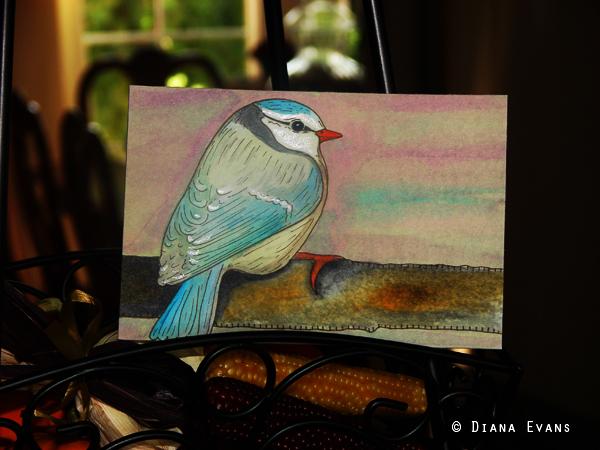 bird2c
